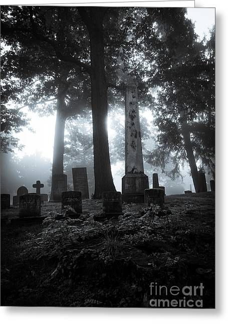 Mourning Fog Greeting Card by CM Goodenbury