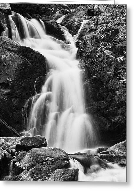 Mouse Creek Falls - Black And White Greeting Card by Photography  By Sai