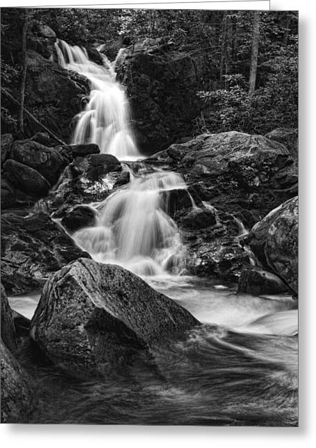 Mouse Creek Falls Greeting Card