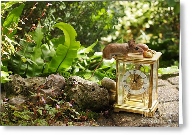Mouse Lunchtime Greeting Card by Elizabeth Debenham