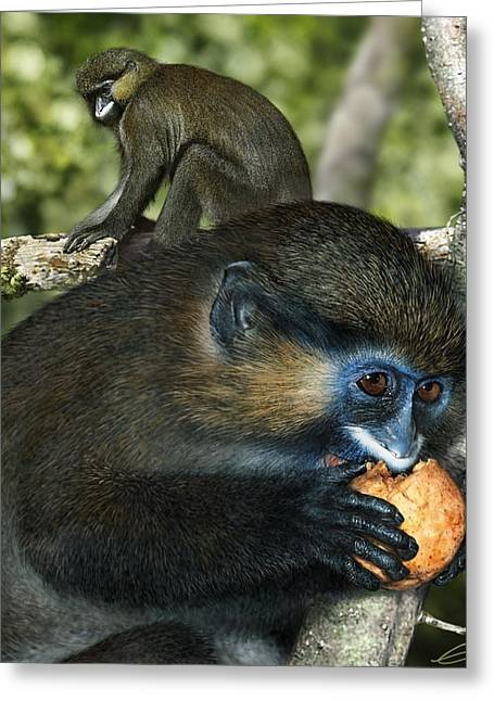 Moustached Guenon Greeting Card by Owen Bell
