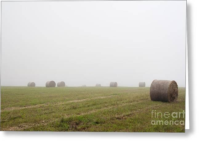 Mowed Meadow In The Mist Greeting Card by Michal Boubin