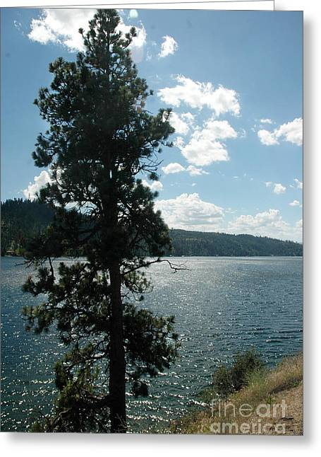 1012a Moyie Lake Bc Greeting Card