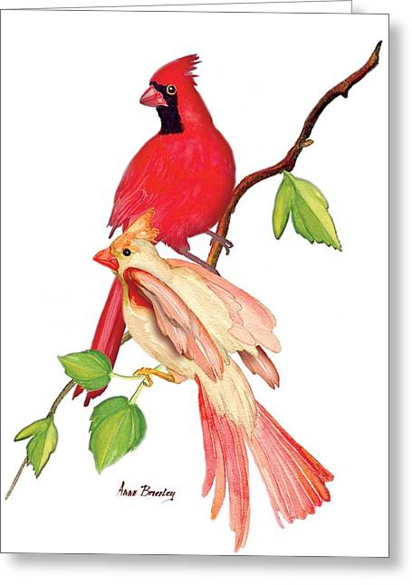 Mr. And Mrs. Cardinal Greeting Card
