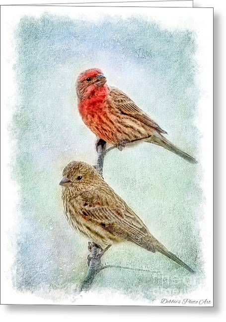 Mr And Mrs House Finch Digital Paint With Frame Greeting Card by Debbie Portwood