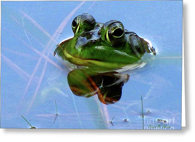 Greeting Card featuring the photograph Mr. Frog by Donna Brown
