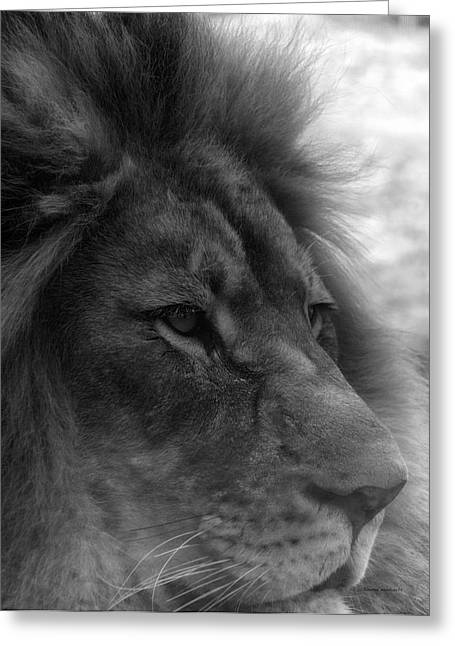 Mr Lion Black And White Profile Greeting Card