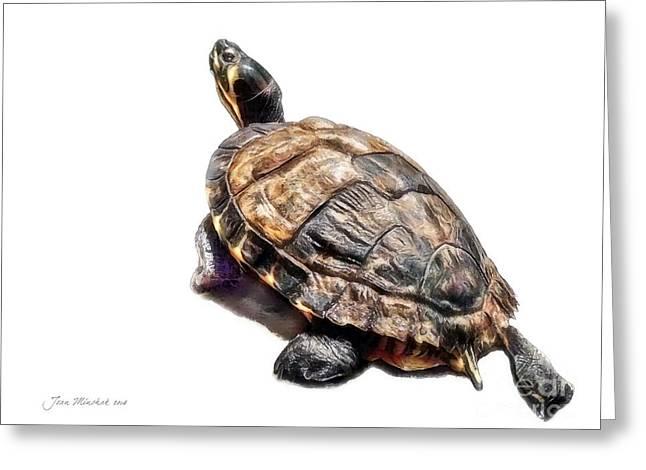 Mr. Turtle Greeting Card by Joan  Minchak