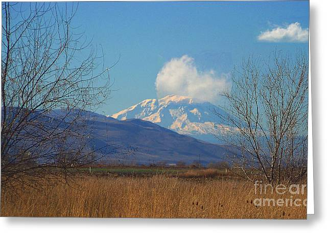 Mt Adams - North Side Greeting Card by Charles Robinson