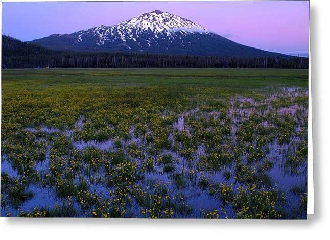 Greeting Card featuring the photograph Mt. Bachelor Twilight by Kevin Desrosiers