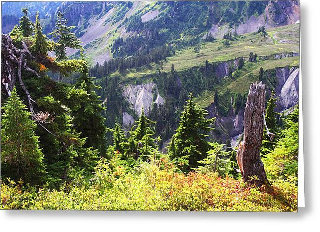 Mt. Baker Washington Greeting Card