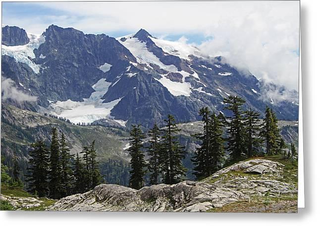 Mt Baker Washington View Greeting Card by Tom Janca