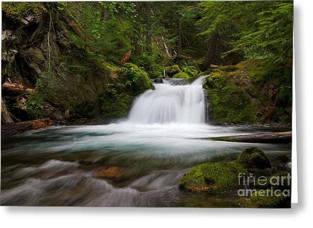 Mt. Hood Cascade In Summer Greeting Card by Jackie Follett