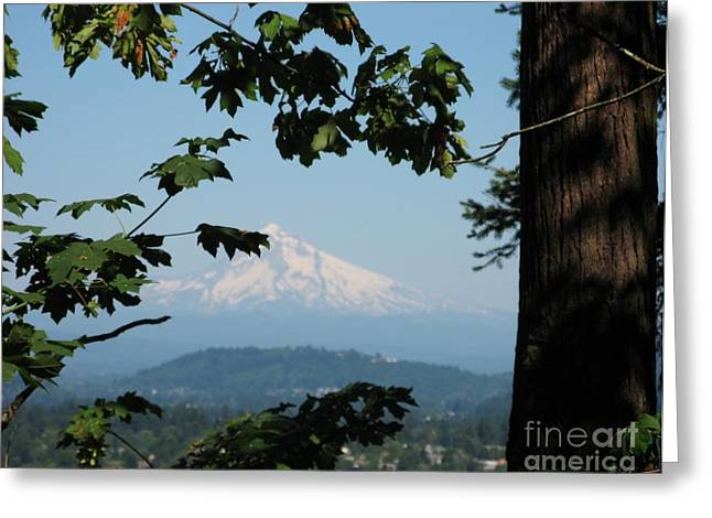 Mt Hood Greeting Card by Marlene Rose Besso