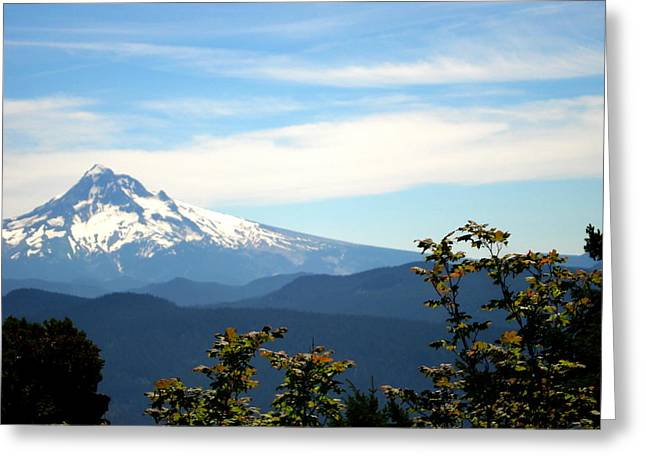 Mt. Hood View From Sherrard Point Greeting Card by Lizbeth Bostrom