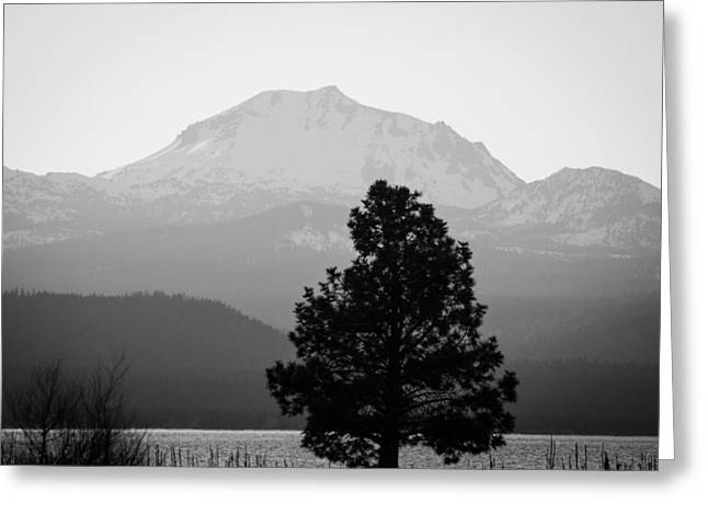 Mt. Lassen With Tree Greeting Card