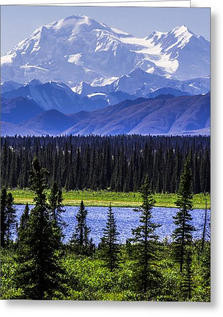 Mt Mckinley From Cantwell Greeting Card