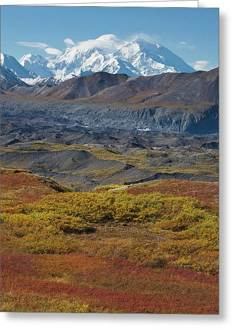 Mt Mckinley, Tallest Peak In North Greeting Card by Hugh Rose