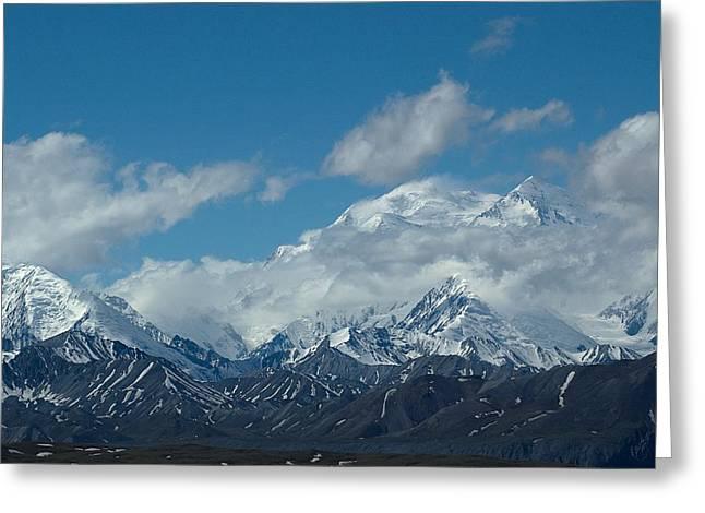 Mt Mckinnley Alaska Greeting Card