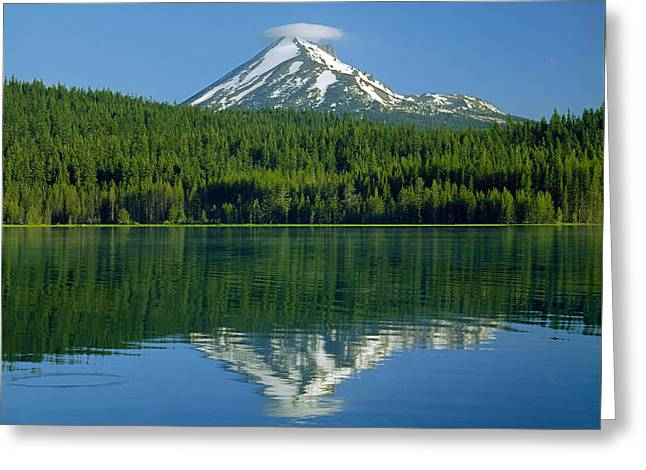 1m5705-h-mt. Mcloughlin From Lake Of The Woods Greeting Card