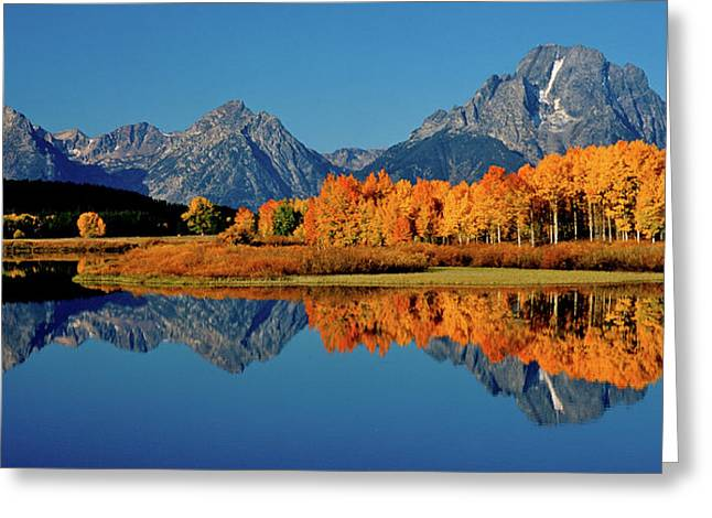 Mt. Moran Reflection Greeting Card by Ed  Riche