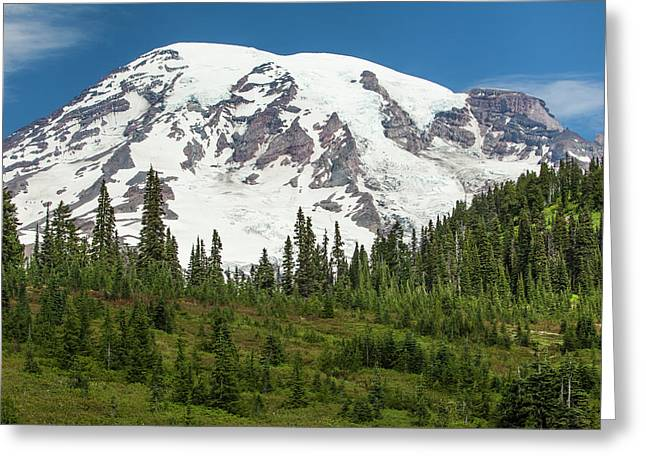 Mt Rainer And Forested Moraines As Seen Greeting Card by Michael Qualls