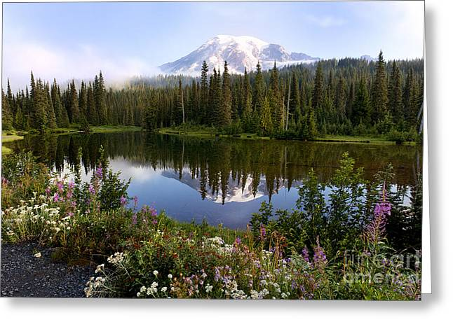 Mt. Rainier National Park Greeting Card by King Wu