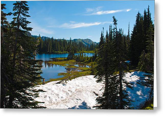 Greeting Card featuring the photograph Mt. Rainier Wilderness by Tikvah's Hope