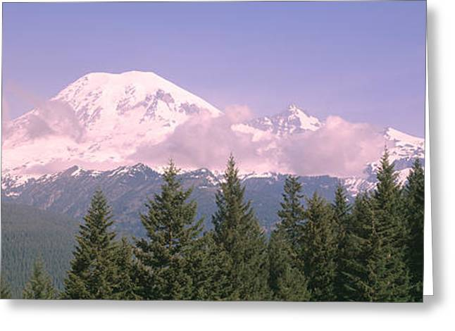 Mt Ranier Mt Ranier National Park Wa Greeting Card by Panoramic Images