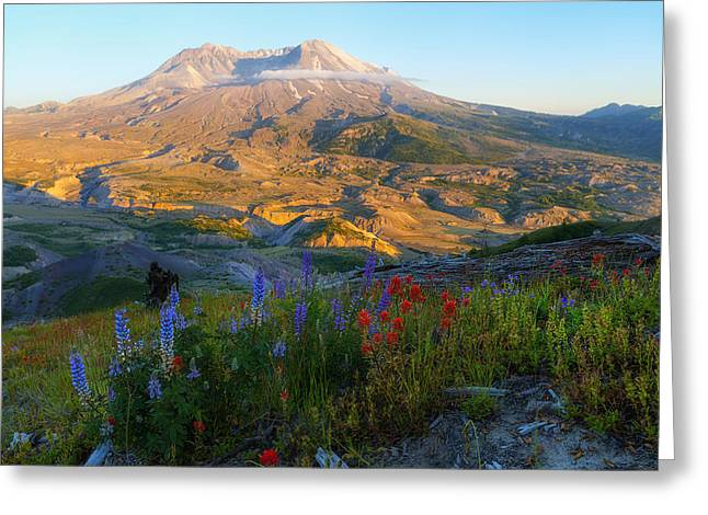 Mt. St. Helens Golden Hour Greeting Card by Ryan Manuel