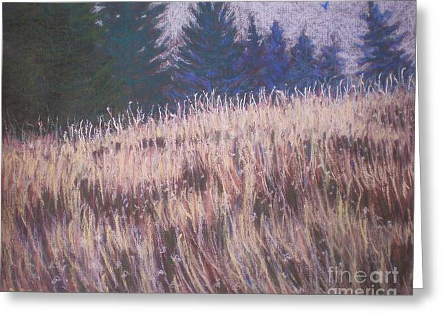 Mt. Tabor Contrasts Greeting Card