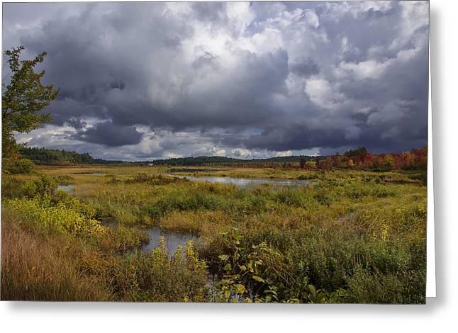 Mud Pond Clouds Greeting Card