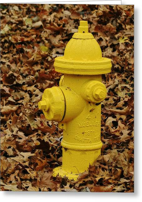 Mueller Fire Hydrant Greeting Card