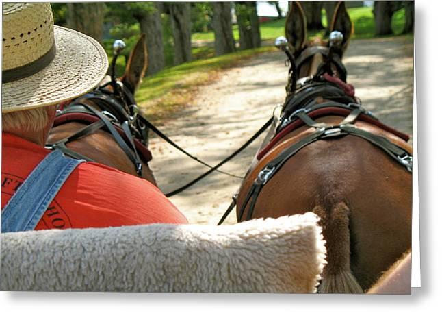 Mule Driver Greeting Card
