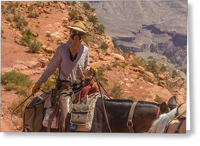 Mule Wrangler On The South Kaibab Trail Greeting Card
