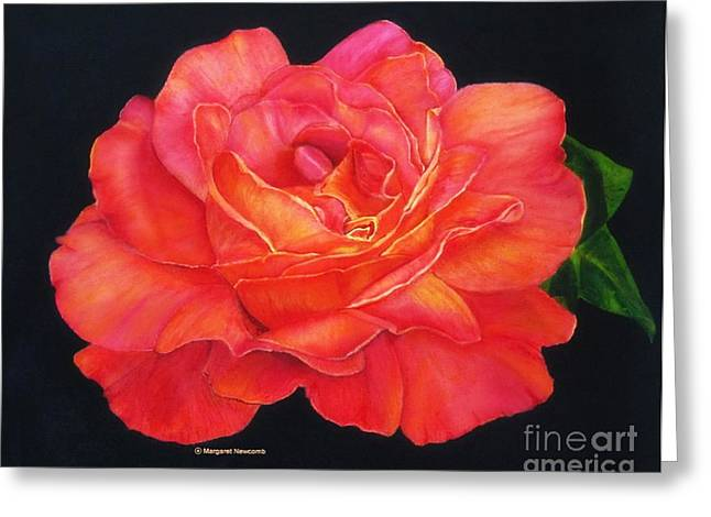 Multi-colored Rose Oils On Canvas - Print Greeting Card