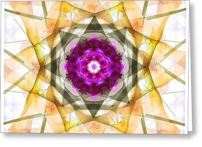 Multi Flower Abstract Greeting Card by Mike McGlothlen
