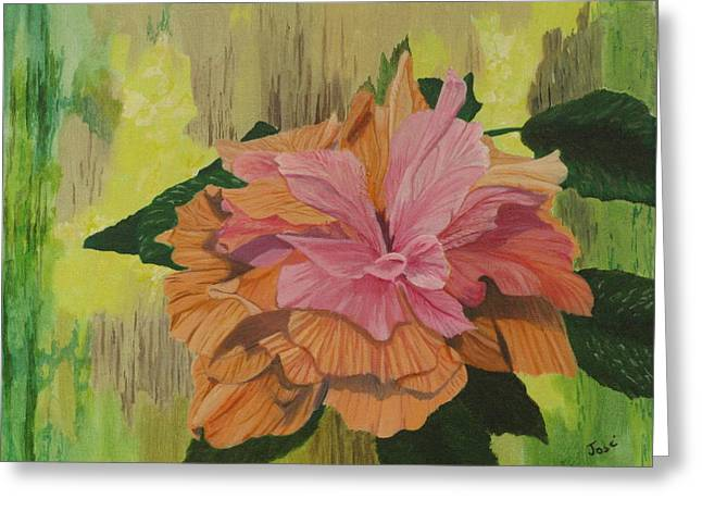 Multi-petaled Pink Peach Hibiscus Greeting Card by Hilda and Jose Garrancho