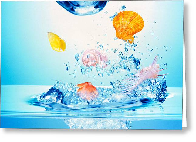 Multicolored Seashells And Water Greeting Card