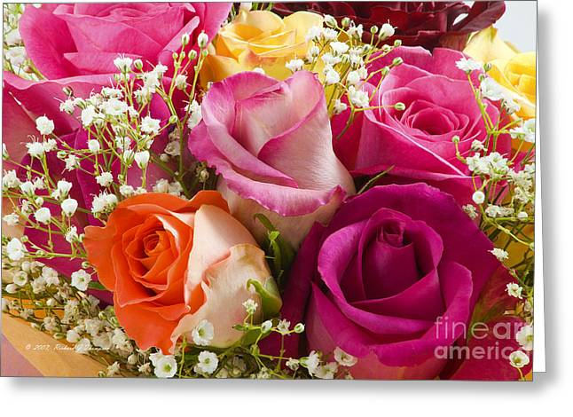 Multiple Roses Arrangement Greeting Card