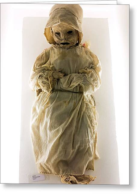 Mummy Museum Greeting Card