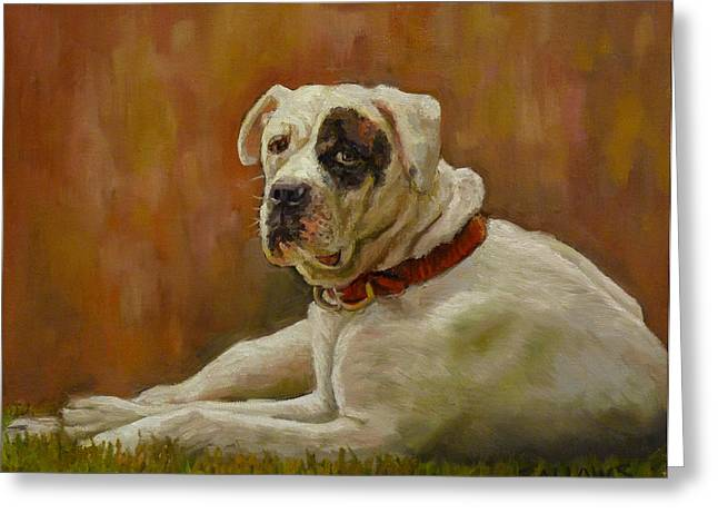 Munson An American Bull Dog Greeting Card by Nora Sallows