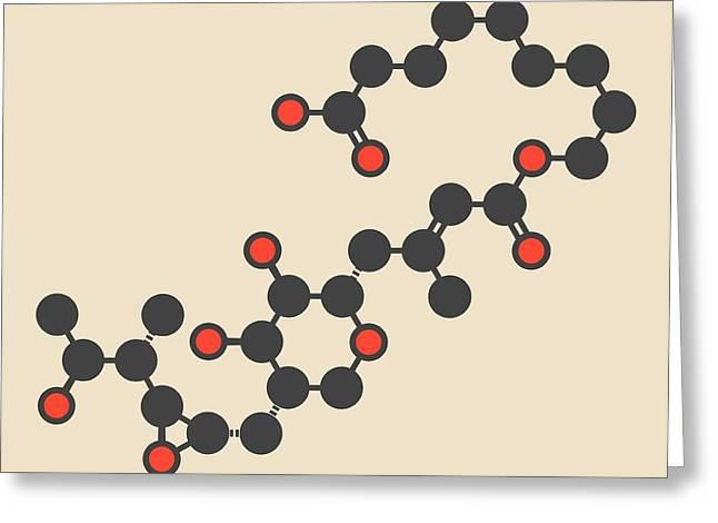Mupirocin Antibiotic Drug Molecule Greeting Card by Molekuul