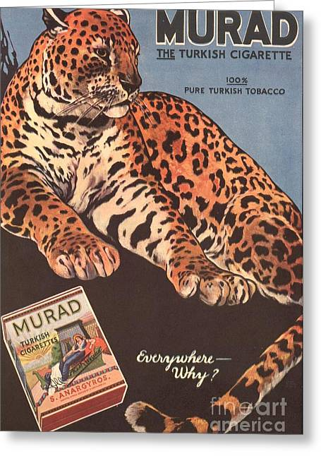 Murad 1910s Usa Cigarettes Smoking Greeting Card by The Advertising Archives