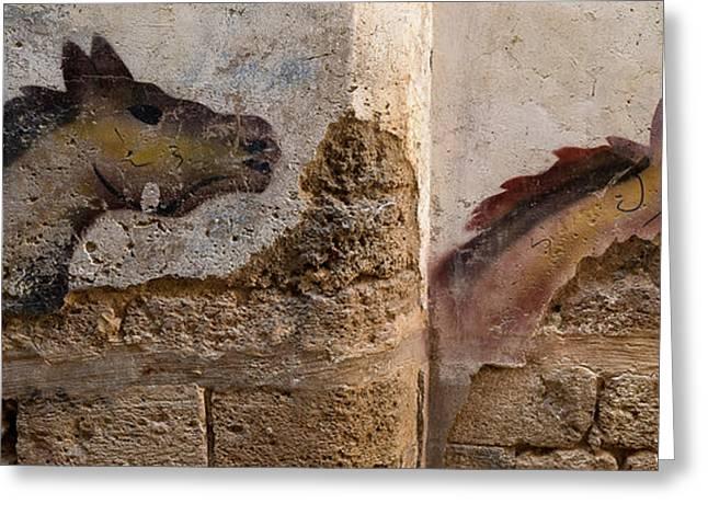 Mural Of Animal On Wall, Acre Akko Greeting Card