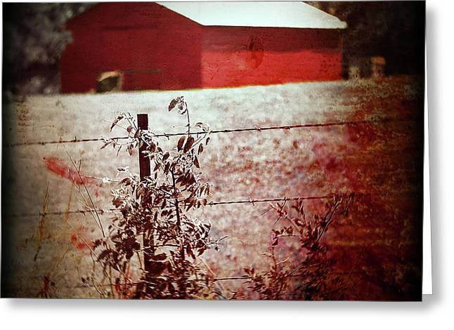 Murder In The Red Barn Greeting Card