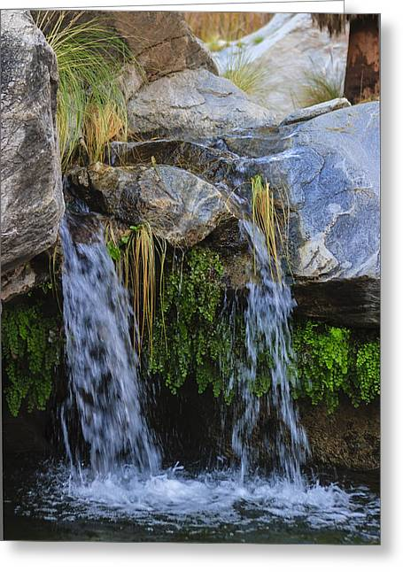 Murray Canon Tranquility Greeting Card by Scott Campbell