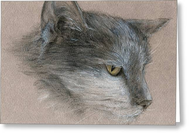 Greeting Card featuring the drawing Murray The Cat by Penny Collins
