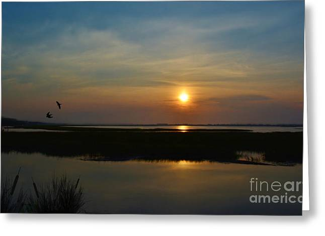 Murrells Inlet Sunrise Greeting Card by Kathy Baccari