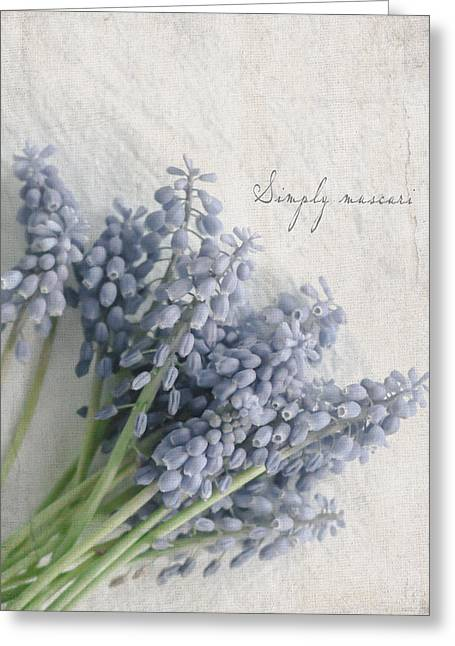Muscari Greeting Card by Beverly Cazzell